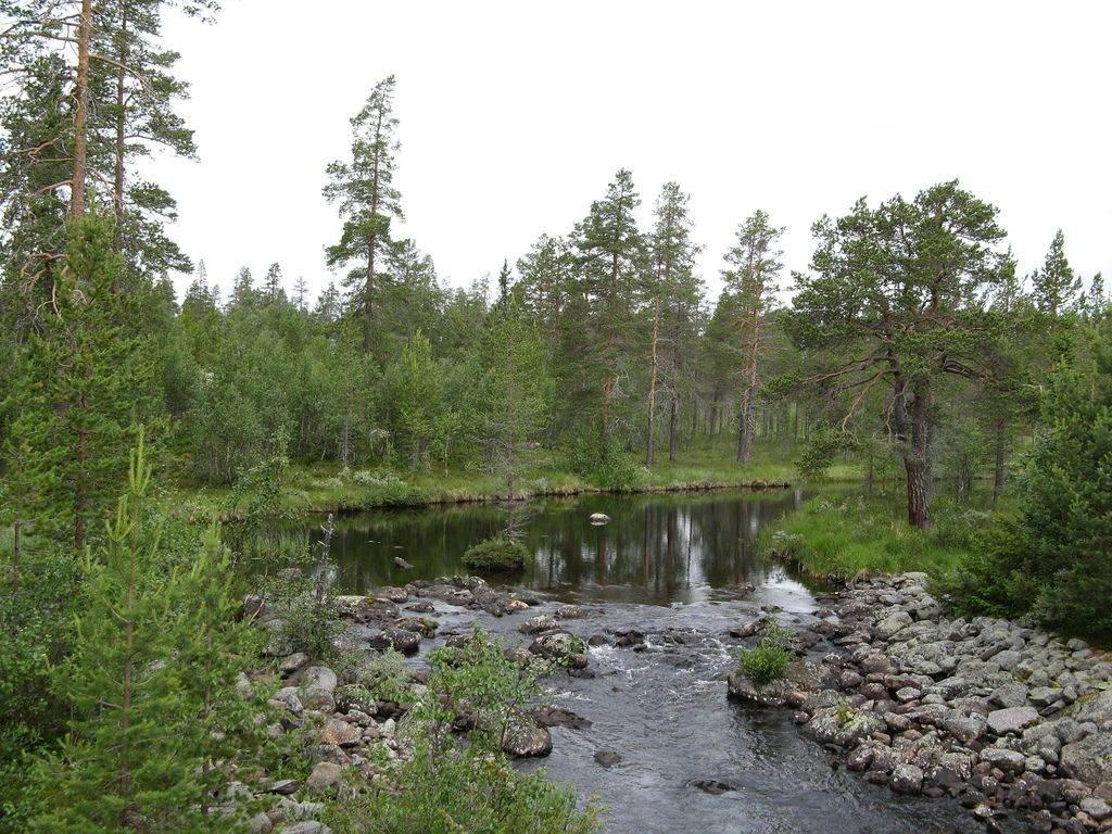 nationale park Fulufjället
