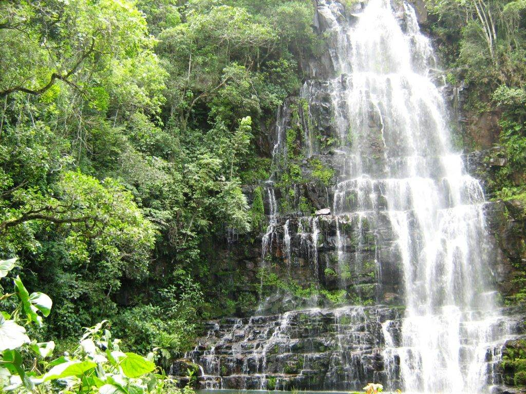 tropische nationale park Ybycuí