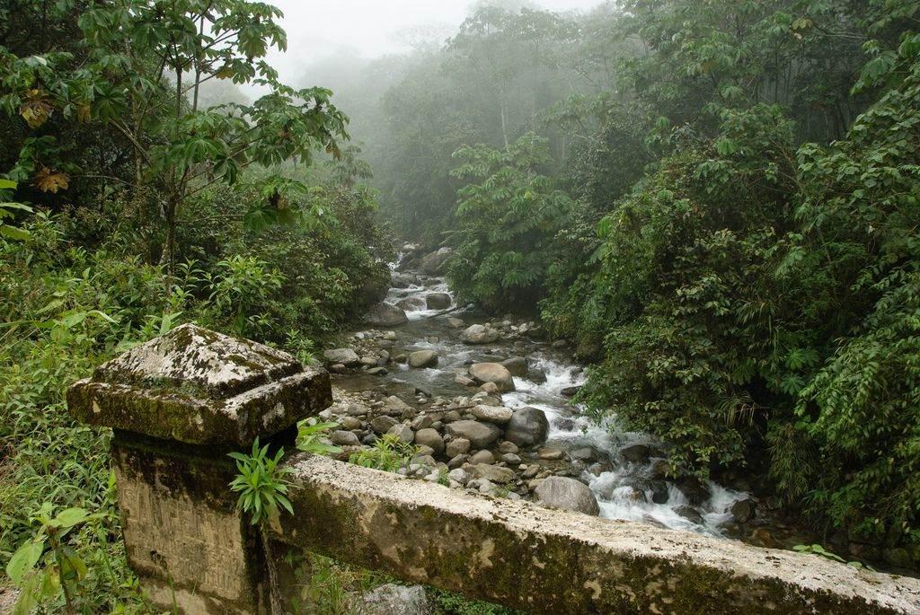 Nationaal park Manu