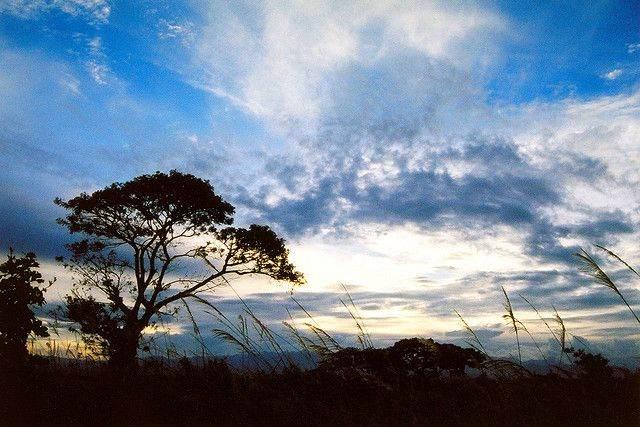 Mindanao natuur