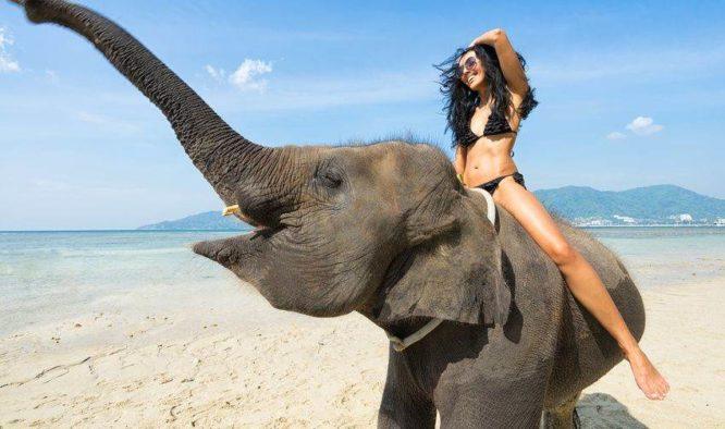 Op olifanten rijden in Thailand