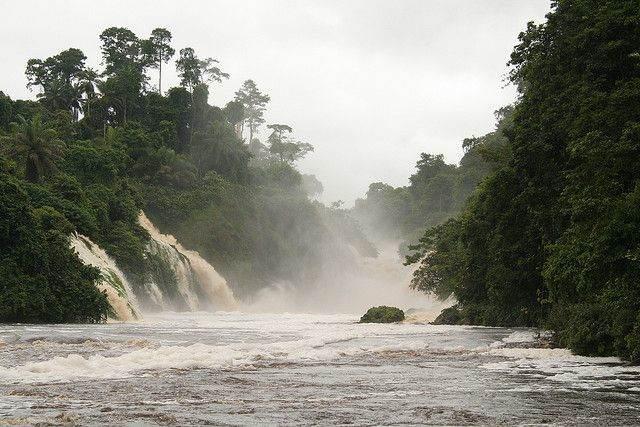 rondreis Gabon