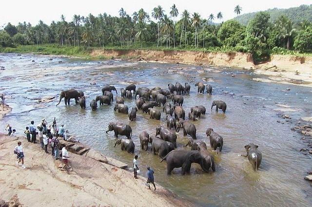 Sri Lanka Actieweek- Korting en Sarong cadeau