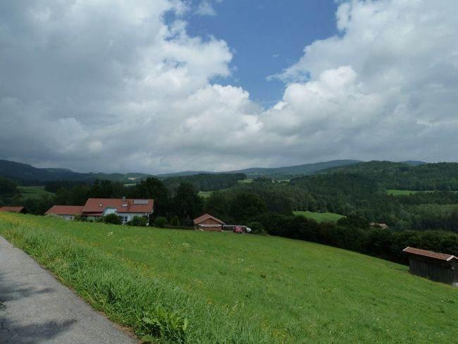 Nationaal-Park-Bayerischer-Wald