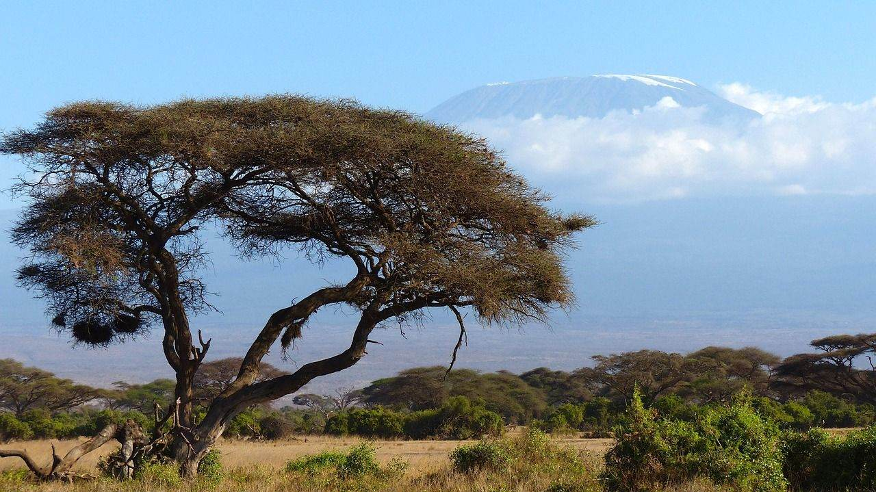 kilimanjaro-720845_1280