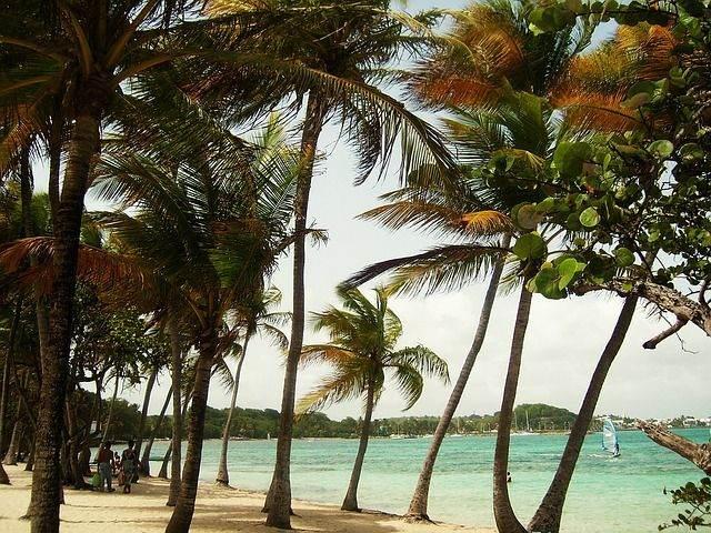 beach-1191204_640
