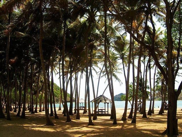 beach-1192111_640