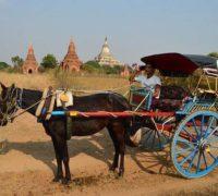 Een soort Uber taxi app heeft nu ook Myanmar bereikt