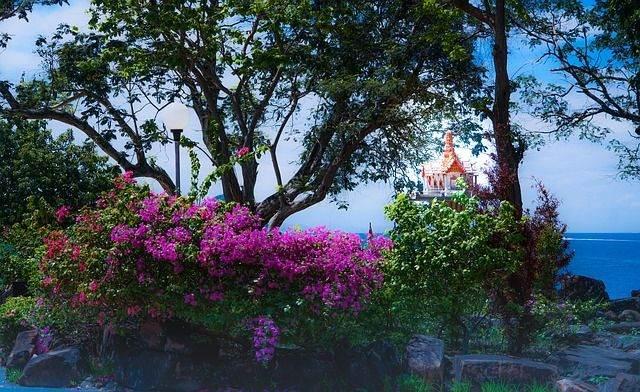 phi-phi-island-tour-1497831_640
