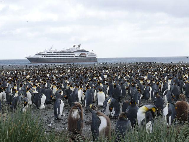 antarctica-337591_640