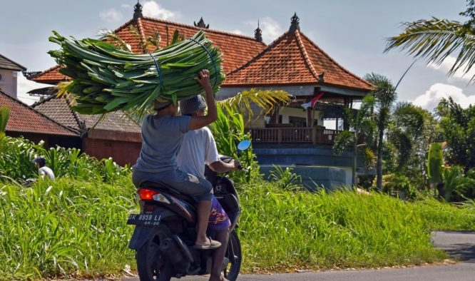 vakantie denpasar