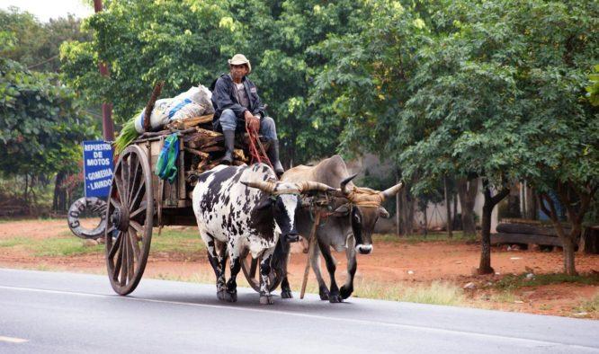 Vakantie Paraguay