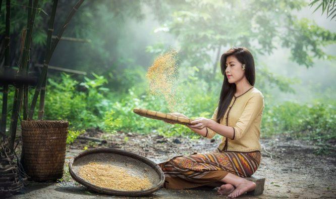 De mooiste bestemmingen in Thailand tonen Aziatische rijkdom