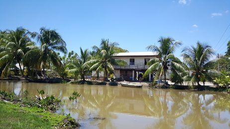 Bakkie Reynsdorp Suriname