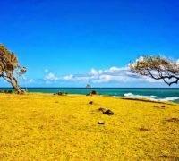 Vakantie Basse-Terre Guadeloupe