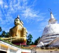 Op vakantie naar de winterzon - Sri Lanka