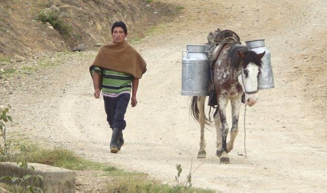 Vakantie Cajamarca Peru