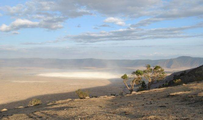 Vakantie Arusha Tanzania