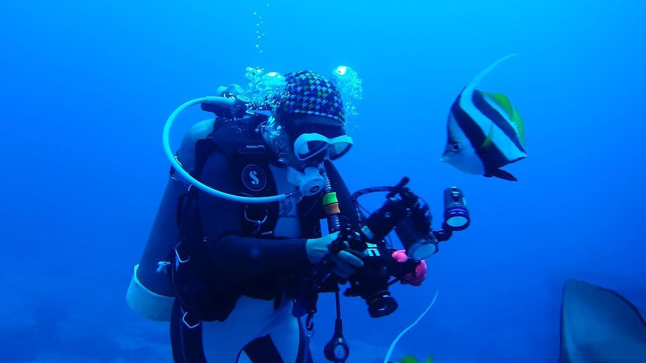 diving-713816_1280