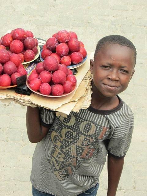 rondreis zambia