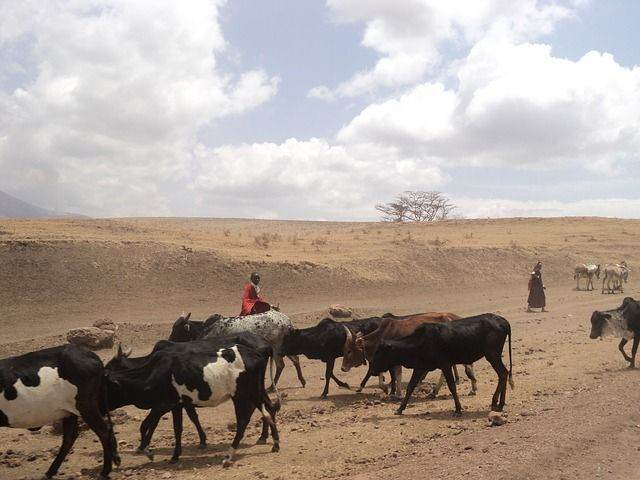 5 Gave activiteiten om te doen in Tanzania