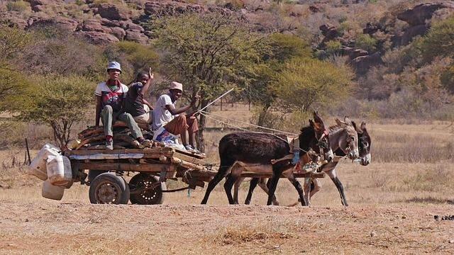 Een georganiseerde rondreis door Botswana