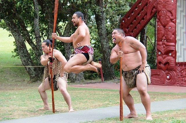 Waitangi Treaty Ground