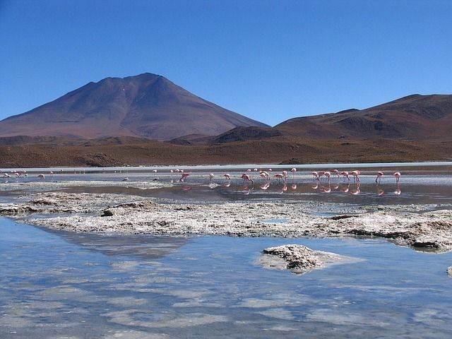 bolivia-1409396_640