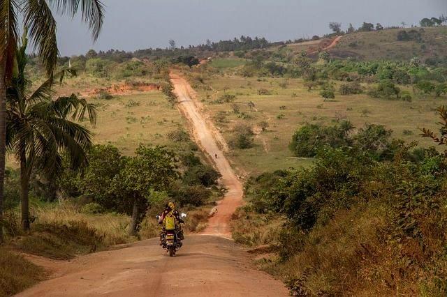 nature-road-279978_640