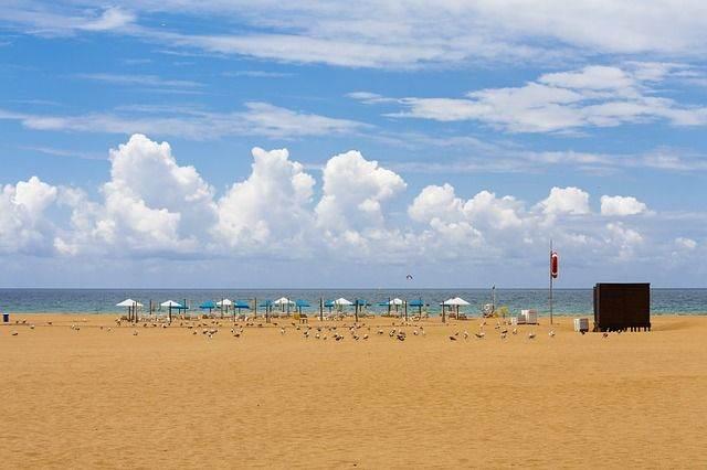 beach-832724_640