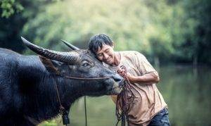 Rondreis Laos