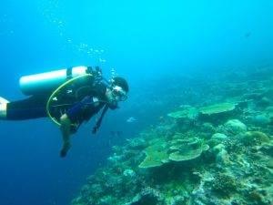 De Malediven – een waar paradijs voor duikers en snorkelaars