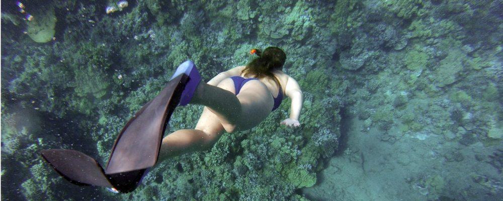 snorkeling-984422_1280
