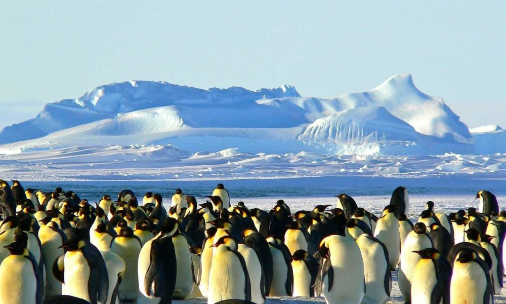 Rondreis Antarctica