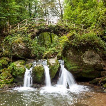 Vakantie in Luxemburg ,natuurpracht en historie in één
