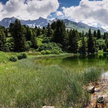 Reizen in Zwitserland