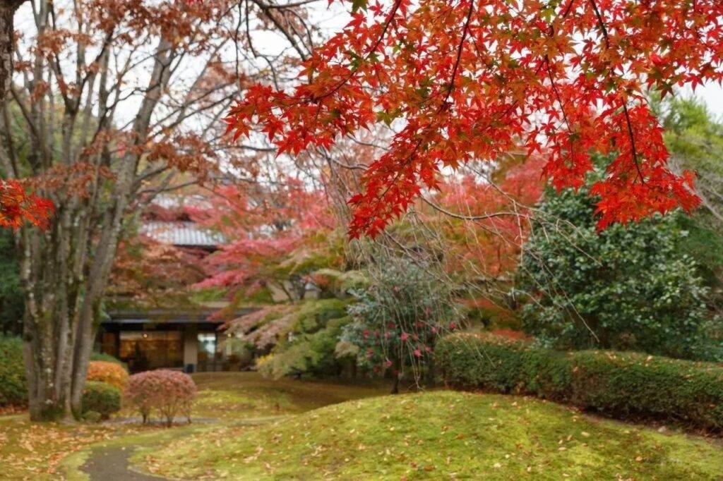 Ranzan hotel Kyoto