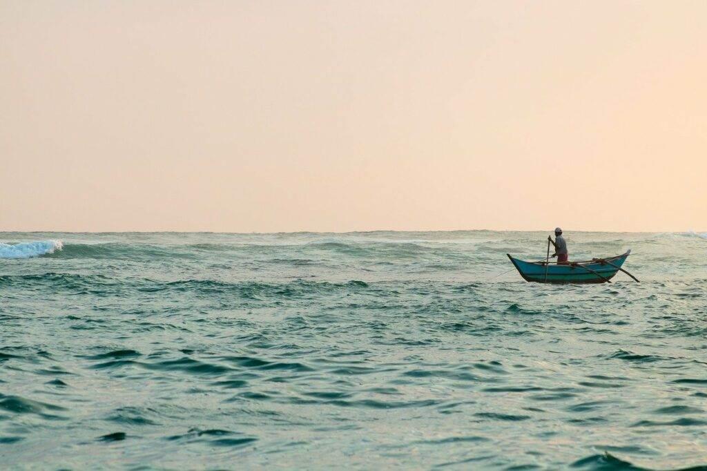 Walvissen en Dolfijnen Spotten In Mirissa